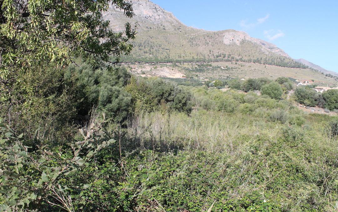 Terreno Aversa Castellammare del Golfo Vendita2015-10-03 10.28.58