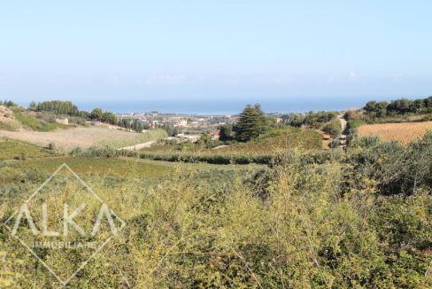 Terreno Aversa Castellammare del Golfo Vendita2015-10-03 10.29.04