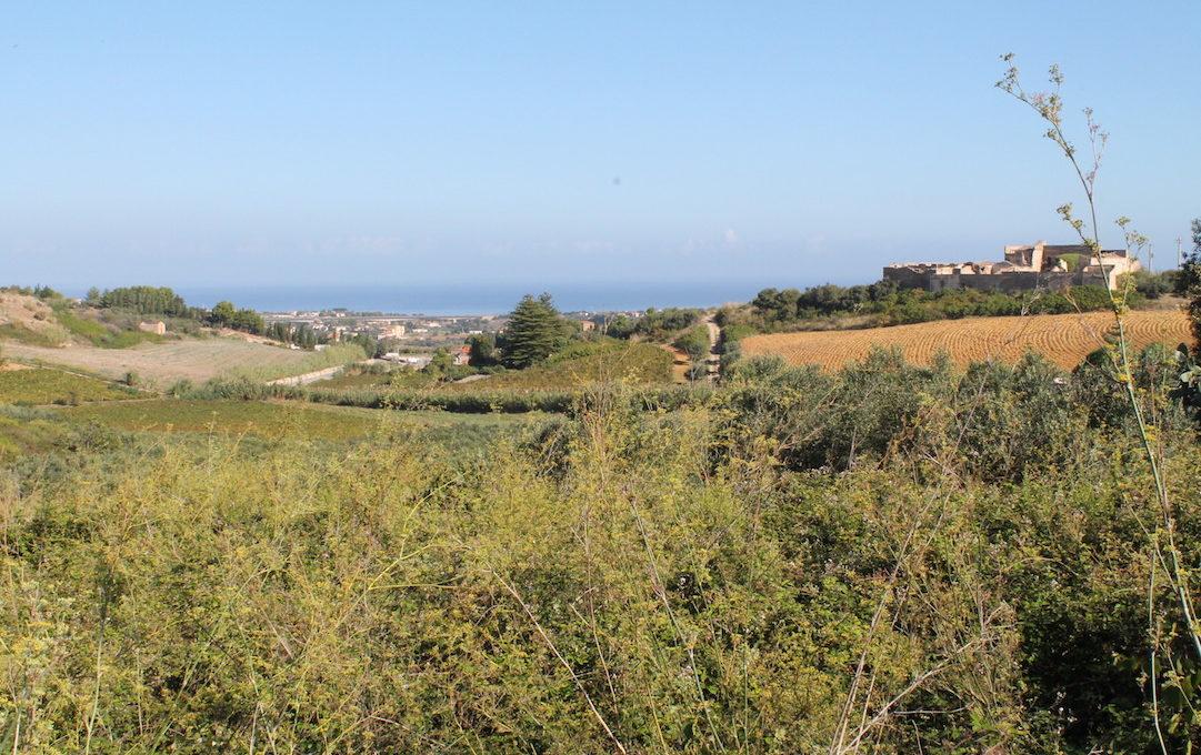 Terreno Aversa Castellammare del Golfo Vendita2015-10-03 10.29.08
