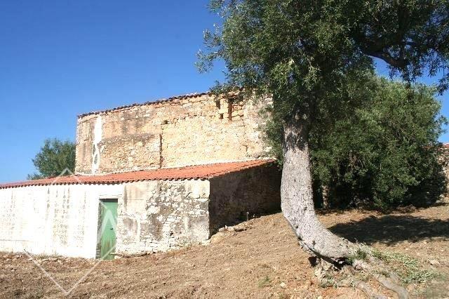 Villa Trabia2009-07-22 17.19.19