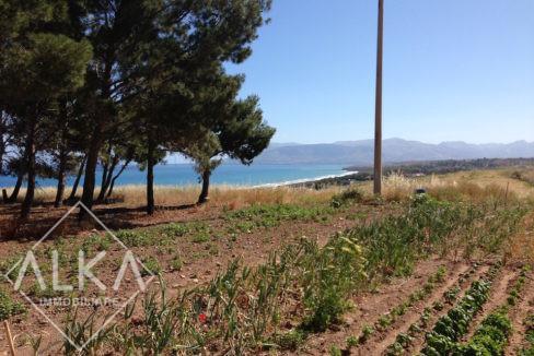 Villa Pratameno AlcamoIMG_6596