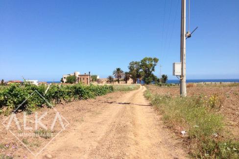 Villa Pratameno AlcamoIMG_6607
