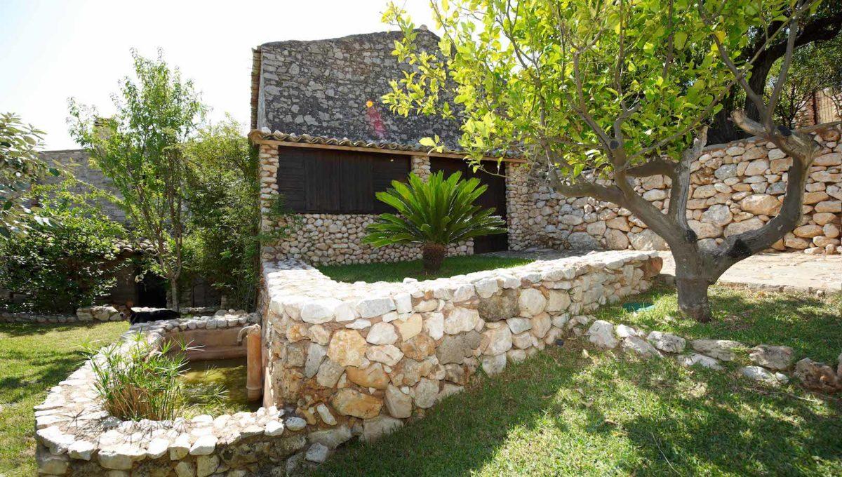 (7)casa sarnuci